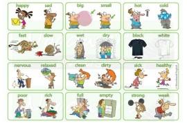 Bộ 50 cặp tính từ trái nghĩa thông dụng nhất trong tiếng Anh